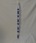 Sigma Gamma Rho Greek Letter Clear Cane