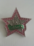 Alpha Kappa Alpha Silver Star Fashion Pin - 3