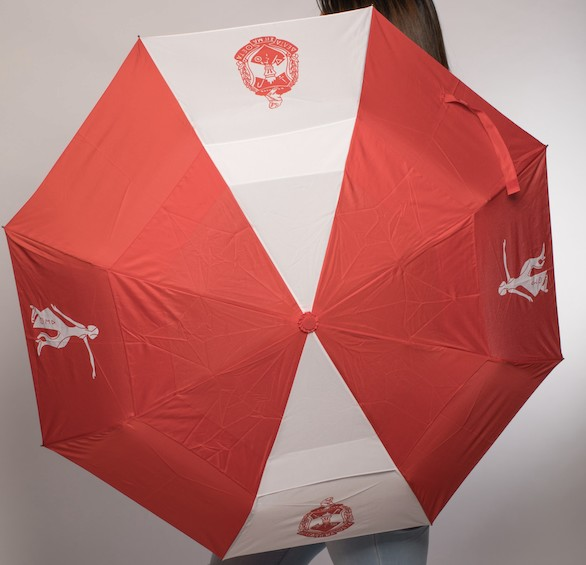 Delta Sigma Theta Folding Umbrella